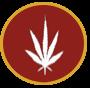 Criminal Defense Lawyer Drug Violations