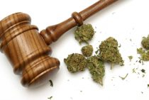 6 Signs of Marijuana Impairment in Drivers | Westminster DUI Attorney